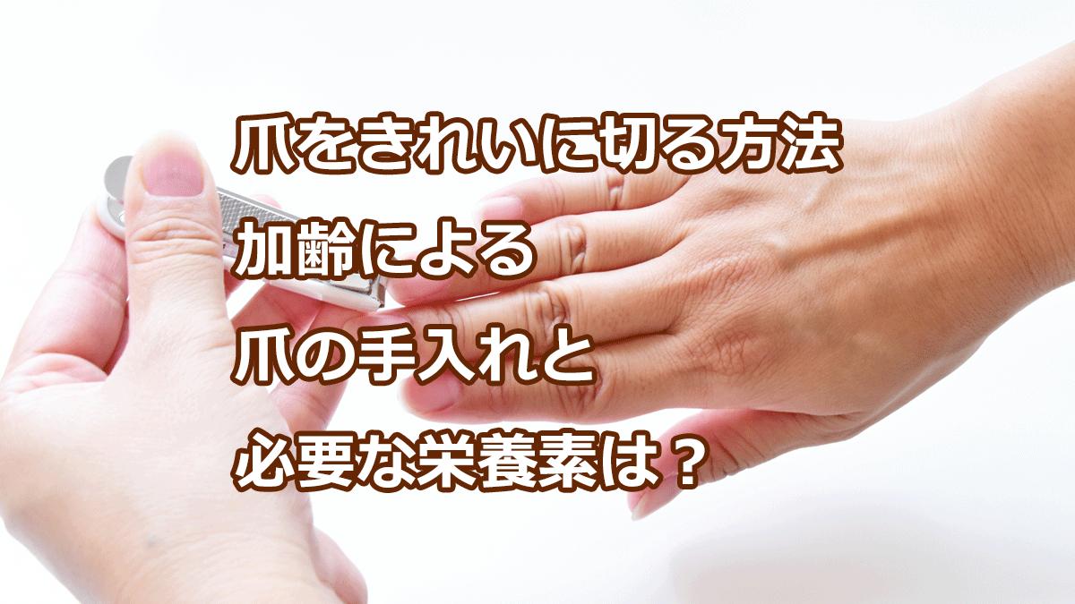 爪をきれいに切る方法 加齢による爪の手入れと必要な栄養素は?