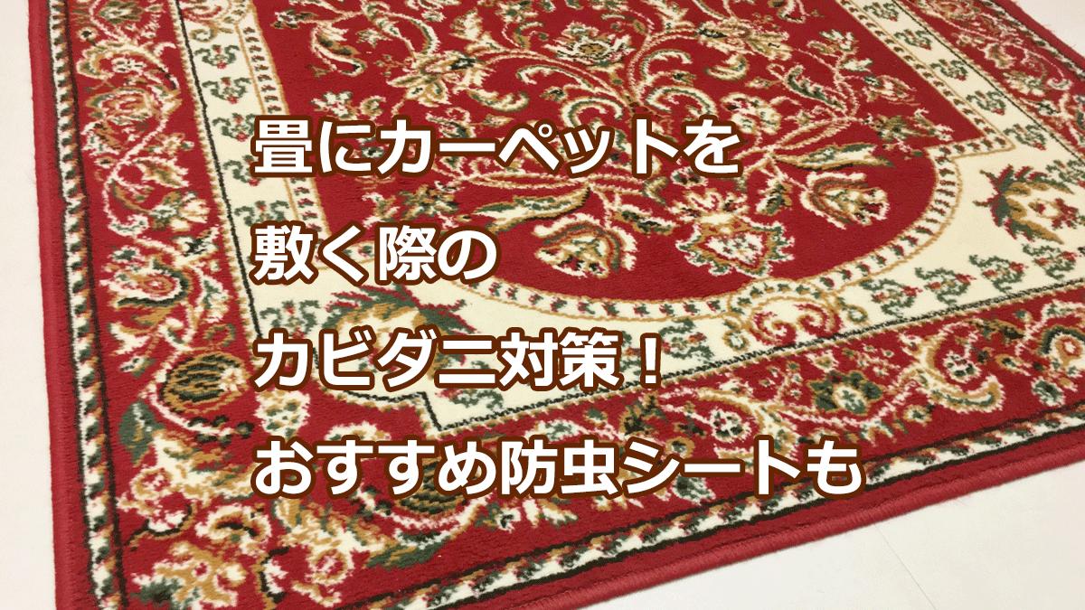 畳にカーペットを敷く際のカビダニ対策!おすすめ防虫シートも