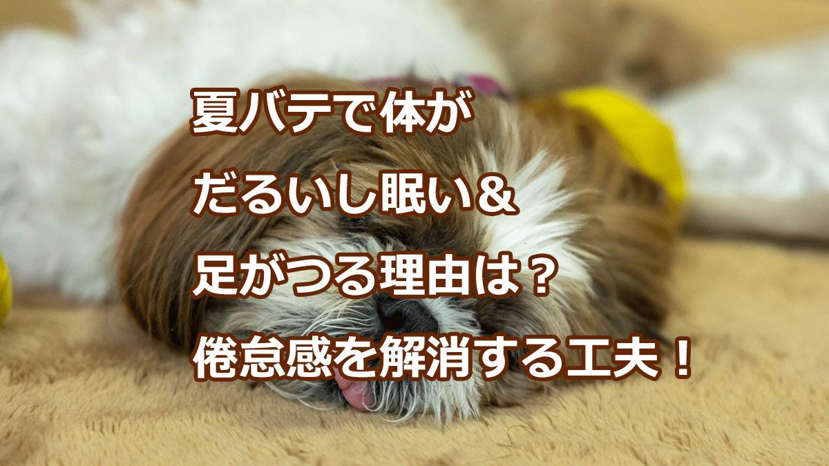 夏バテで体がだるいし眠い&足がつる理由は?倦怠感を解消する工夫!