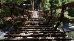 大歩危小歩危のかずら橋
