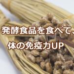 発酵食品を食べて体の免疫力UP
