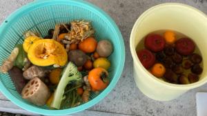 季節の野菜、果物で作る手作り酵素の素材